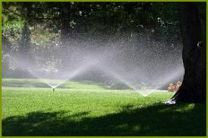 a sprinkler system installed by our Bonney Lake sprinkler repair specialists