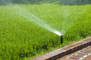 a spray nozzle sprinkler covers the lawn
